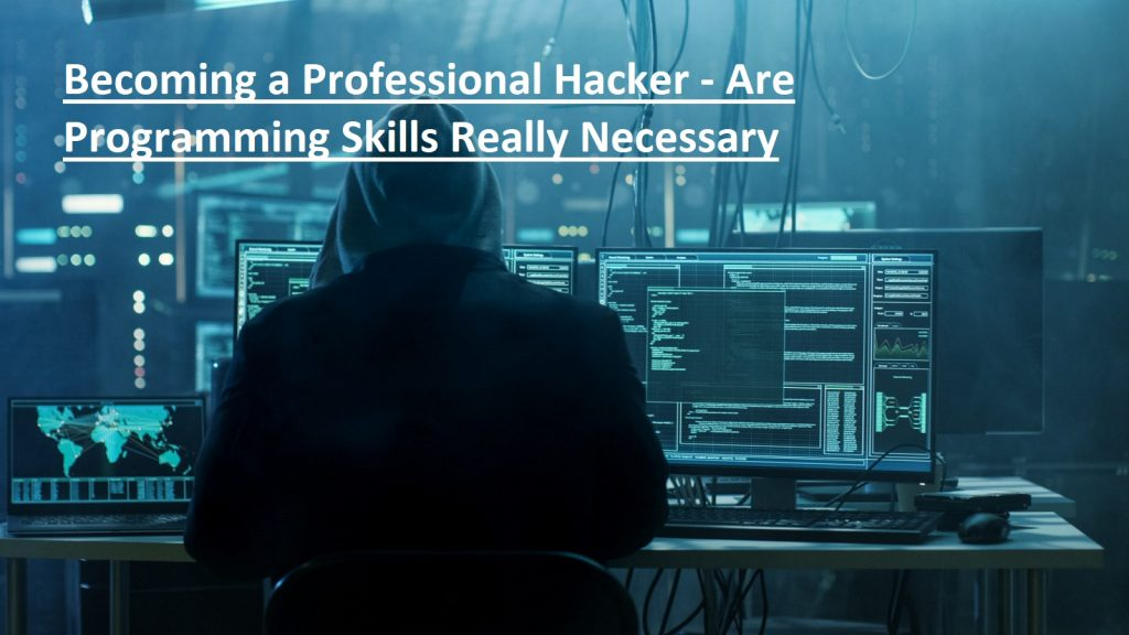 Becoming a Professional Hacker - Are Programming Skills Really Necessary